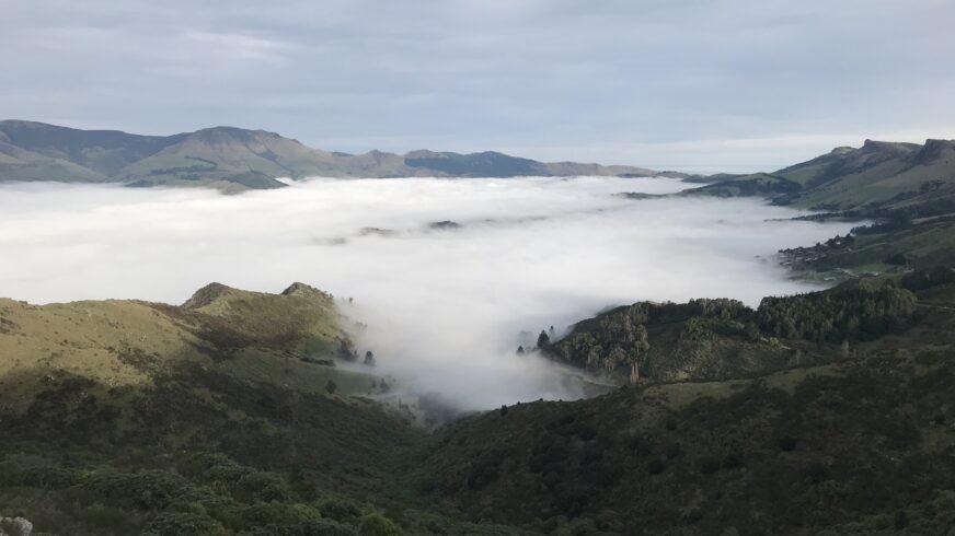 Sampsa Vires vietti opintovapaansa Uudessa-Seelannissa