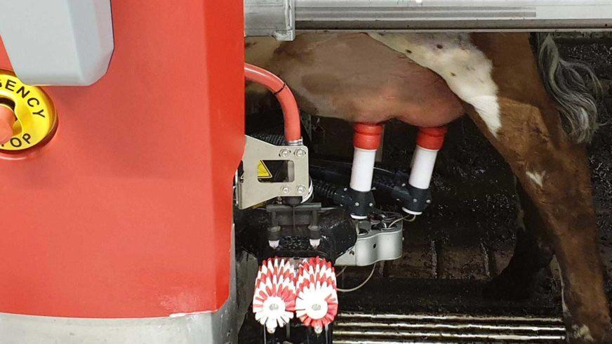 Webinar farmer-operated milk recording systems